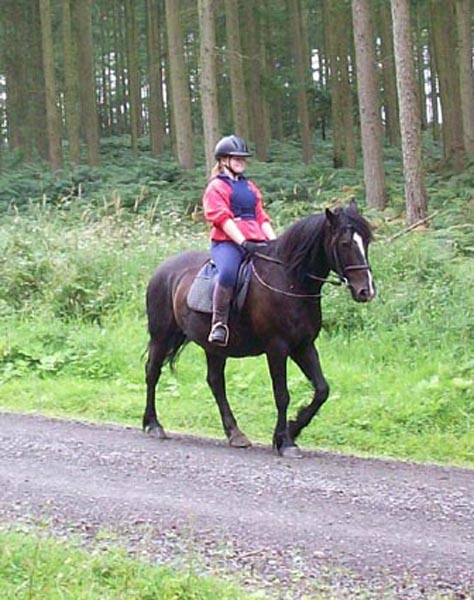 Riding in Mortimer Forest